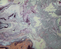 Fig Inspired Purple, Peach, Champagne, and Cream Pastel Fluid Acrylic Abstract Painting by Holly Cromer